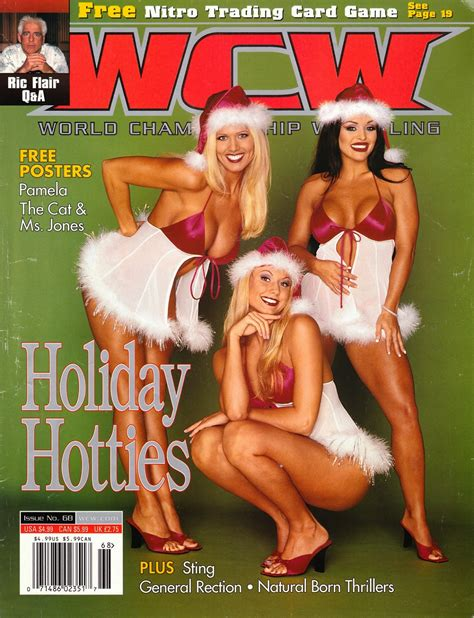 International Object: Merry Christmas from WCW