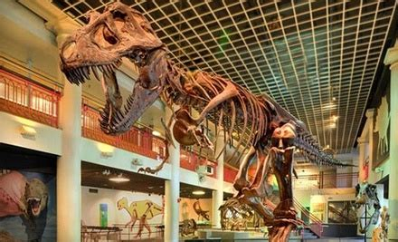 $6 for Ticket to Academy of Natural Sciences in
