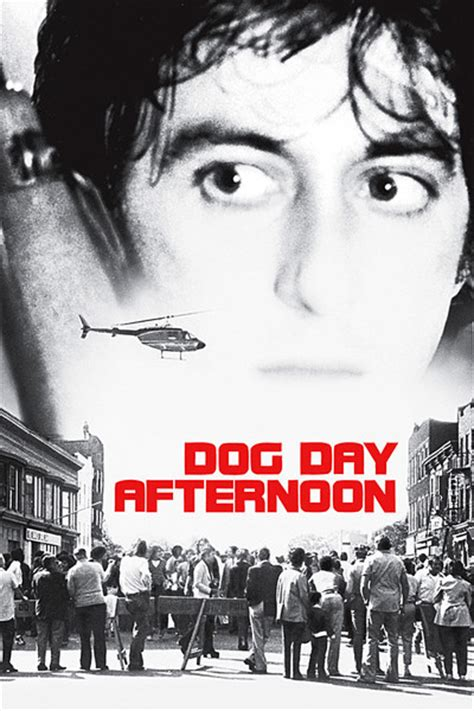 Dog Day Afternoon movie review (1975) | Roger Ebert