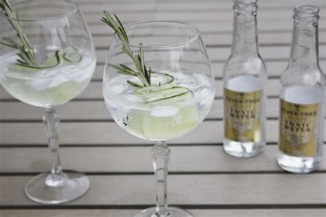 Gin Tonic Special - Cocktailicious Blog