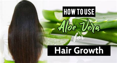 How To Use Aloe Vera For Hair Growth - Remedies Lore